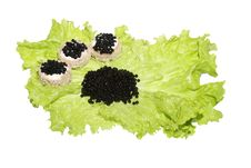 Free Black Caviar  On Lettuce With Bread Royalty Free Stock Photography - 6744257