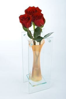 Free Roses In A Vase Royalty Free Stock Images - 6744519