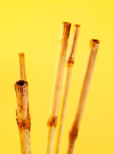 Free Bamboo Still-life Stock Images - 6744884