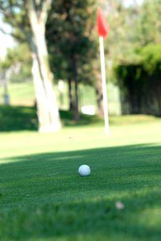 Free Golf Ball Stock Photo - 6748630