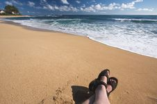 Free Man Relaxes On Tropical Shoreline Stock Photo - 6749430