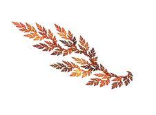 Free Fractal Leaf Royalty Free Stock Images - 6751909
