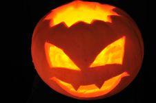 Free Pumpkin Stock Photos - 6752333
