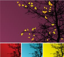 Free Autumn Tree Background Stock Photo - 6753830