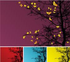 Free Autumn Tree Background Stock Photo - 6753830