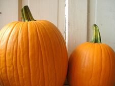 Free Two Pumpkins Royalty Free Stock Images - 6757129
