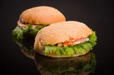 Two Hamburger Royalty Free Stock Photos
