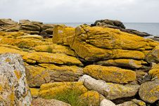 Free Stony Coast At The Baltic Sea, Bornholm, Denmark Stock Image - 6762061