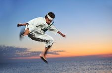 Free Martial Art Royalty Free Stock Photography - 6762597