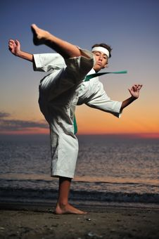 Free Martial Art Royalty Free Stock Photo - 6762605