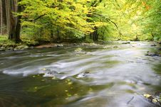 Free Autumn River Royalty Free Stock Photo - 6764615