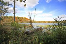 Free Sand Lake In Nthe Fall Looking West Stock Image - 6765211