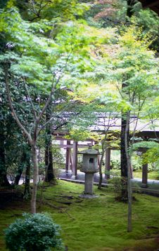 Free Japanese Garden With Stone Lantern Royalty Free Stock Photo - 6765365