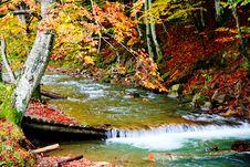 Free Autumn River Royalty Free Stock Photo - 6765395