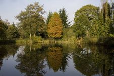 Free Autumn Reflections Stock Images - 6767044