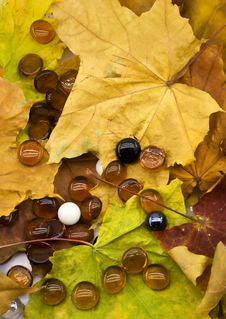 Free Glass Balls On Autumn Foliage Stock Photo - 6767100