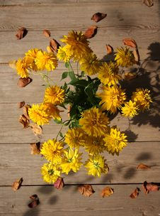 Free Autumn Still Life Royalty Free Stock Image - 6767276