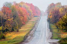 Free Autumn Road Stock Image - 6767381