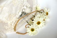 Pearl Necklace And Daisies Stock Images