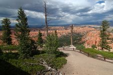 Free Bryce Canyon Royalty Free Stock Image - 6768626