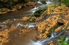 Free Fall Creek Stock Photography - 6769032