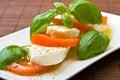 Free Slices Of Tomato And Mozzarella Stock Photography - 6772242