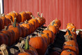 Free Pumpkins For Sale Royalty Free Stock Image - 6778786
