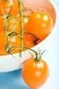Free Bowl Of Yellow Cherry Tomatoes Stock Photos - 6779823