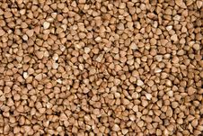 Free Background Of Brown Buckwheat Stock Photography - 6770192