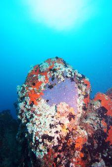 Free Underwater Rock Formation Stock Photos - 6771273