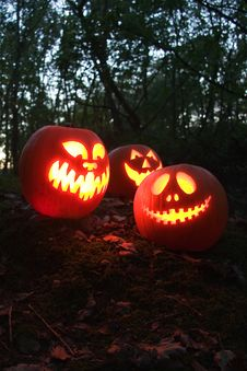 Free Halloween Pumpkins Stock Photo - 6771990