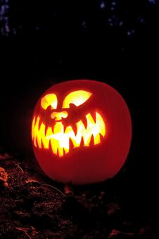 Free Halloween Pumpkins Royalty Free Stock Images - 6772069