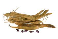 Green Bean. Royalty Free Stock Photo