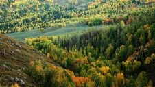 Free Colorful Forest Stock Photography - 6772222
