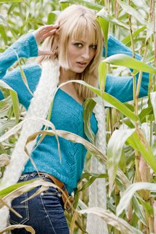 Free Atractive Cornfield Girl Stock Images - 6774884