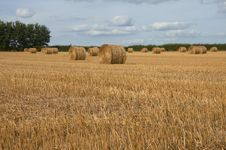 Free Hay Bales Royalty Free Stock Image - 6775386