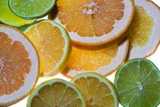 Free Sliced Citrus Fruits Royalty Free Stock Image - 6775496