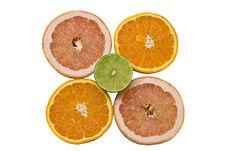 Free Sliced Citrus Fruits Royalty Free Stock Photos - 6775498