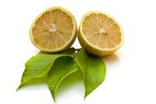 Free Ripe Lemons Royalty Free Stock Image - 6775526