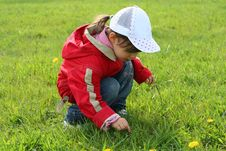 Free Little Girl In Red Coat Tear Flower Stock Photo - 6776080