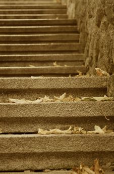 Free Stair With Leaves Stock Photos - 6778043