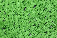 Free Turf Royalty Free Stock Images - 6778599