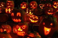 Free Carved Lighted Pumpkins Stock Image - 6779421