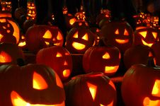 Free Carved Lighted Pumpkins Royalty Free Stock Images - 6779549