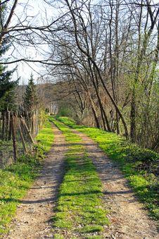 Free Village Road Royalty Free Stock Image - 6779866