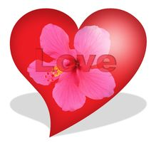 Free Isolated Flower Heart Royalty Free Stock Image - 6780156