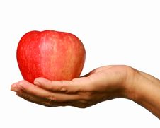 Free Apple And  Hand. Stock Images - 6781514