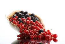 Free Macro Berry Stock Photos - 6783233