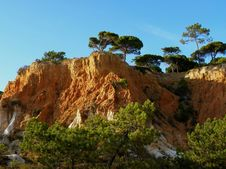 Free Cliffs And Pines 1 Stock Images - 6783574
