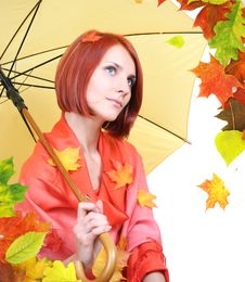 Free Autumn Leave Stock Image - 6784541